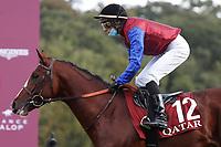 4th October 2020, Longchamp Racecourse, Paris, France; Qatar Prix de l Arc de Triomphe;  In Swoop ridden by Ronan Thomas