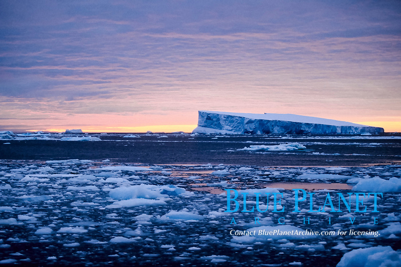 iceberg, at sunset, Antarctica, Southern Ocean
