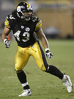 07 September 2006: Pittsburgh Steelers' Troy Palamalu plays against the Miami Dolphins at Heinz Field in Pittsburgh, Pennsylvania.<br />