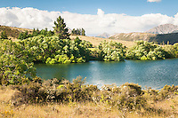 Lake Pearson, Canterbury, New Zealand