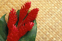 Red torch ginger (nicolalia elatior)  on woven lauhala mat