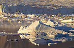 Calved icebergs from the Alsek Glacier float in the Alsek River, Glacier Bay National Park, Alaska, USA