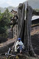 ETHIOPIA, Amhara region, Lalibela , monolith rock churches built by King Lalibela 800 years ago, pilgrim sitting at old tree / AETHIOPIEN Lalibela oder Roha, Koenig LALIBELI liess die monolithischen Felsenkirchen vor ueber 800 Jahren in die Basaltlava auf 2600 Meter Hoehe hauen und baute ein zweites Jerusalem nach, Pilger im Gebet an einem alten Baum