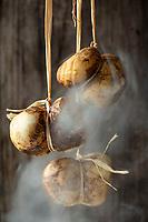 La scamorza est une mozzarella qui est fumée et affinée une quinzaine de jours. Elle se présente sous une forme de poire, ou de sablier, car elle est pendue par une corde durant son affinage et pour la conserver plus facilement chez soi ou en boutique. D'où son nom, tiré de scamorzare (décapiter en italien) - Ce fromage serait né dans le sud de l'Italie, notamment les Pouilles et la Campanie.  //  <br /> Europe / Italy / Campania / Naples / Scamorza is a mozzarella that is smoked and refined for a fortnight. It comes in a pear or hourglass shape, because it is hung by a rope during its ripening and to keep it more easily at home or in the shop. Hence its name, taken from scamorzare (beheaded in Italian) - This cheese was born in southern Italy, including Apulia and Campania.