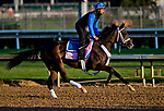 LOUISVILLE, KY - MAY 01: Take Charge Paula, trained by Kiaran McLaughlin, exercises in preparation for the Kentucky Oaks at Churchill Downs on May 1, 2018 in Louisville, Kentucky. (Photo by Scott Serio/Eclipse Sportswire/Getty Images)
