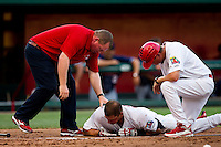 Travis Tartamella (29) of the Springfield Cardinals lays on the ground after being hit in the face by a pitch during a game against the Arkansas Travelers at Hammons Field on July 25, 2012 in Springfield, Missouri. (David Welker/Four Seam Images)