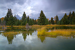 Wyoming, Jackson, Grand Teton national Park. A passing autumn storm over the Teton Range with reflections in a pond.