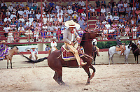 HISPANIC RODEO (CHARREADA) COMPETITOR STOPS HIS HORSE IN RECORD TIME DISTANCE. RODEO RIDER. SAN ANTONIO TEXAS.
