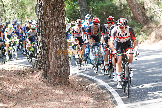 UAE Team Emirates set the pace on the front of the peloton during Stage 12 of La Vuelta d'Espana 2021, running 175km from Jaén to Córdoba, Spain. 26th August 2021.     <br /> Picture: Luis Angel Gomez/Photogomezsport | Cyclefile<br /> <br /> All photos usage must carry mandatory copyright credit (© Cyclefile | Luis Angel Gomez/Photogomezsport)