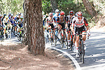 UAE Team Emirates set the pace on the front of the peloton during Stage 12 of La Vuelta d'Espana 2021, running 175km from Jaén to Córdoba, Spain. 26th August 2021.     <br /> Picture: Luis Angel Gomez/Photogomezsport   Cyclefile<br /> <br /> All photos usage must carry mandatory copyright credit (© Cyclefile   Luis Angel Gomez/Photogomezsport)