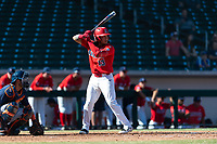 Arizona third baseman Nick Quintana (13) during an NCAA exhibition game against Cal State Fullerton at Sloan Park on October 28, 2018 in Mesa, Arizona. (Zachary Lucy/Four Seam Images)