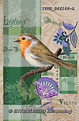 Isabella, REALISTIC ANIMALS, REALISTISCHE TIERE, ANIMALES REALISTICOS, paintings+++++,ITKE066164-L,#a#, EVERYDAY ,collage