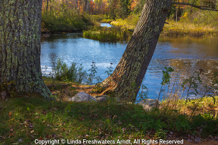 A shoreline resting spot on a tributary to Black Lake in the Chequamegon National Forest.