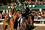 24 October 2009: Satans Quick Chick, with Leandro Goncalves up wins the G2 Lexus Raven Run Stakes at Keeneland Race Course Lexington, Kentucky.