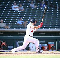 Alfonso Rivas - Mesa Solar Sox - 2019 Arizona Fall League (Bill Mitchell)