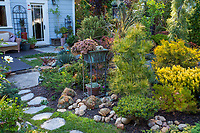 California plant collector garden next to backyard deck patio with conifers, succulents and cordyline - Carol Brant