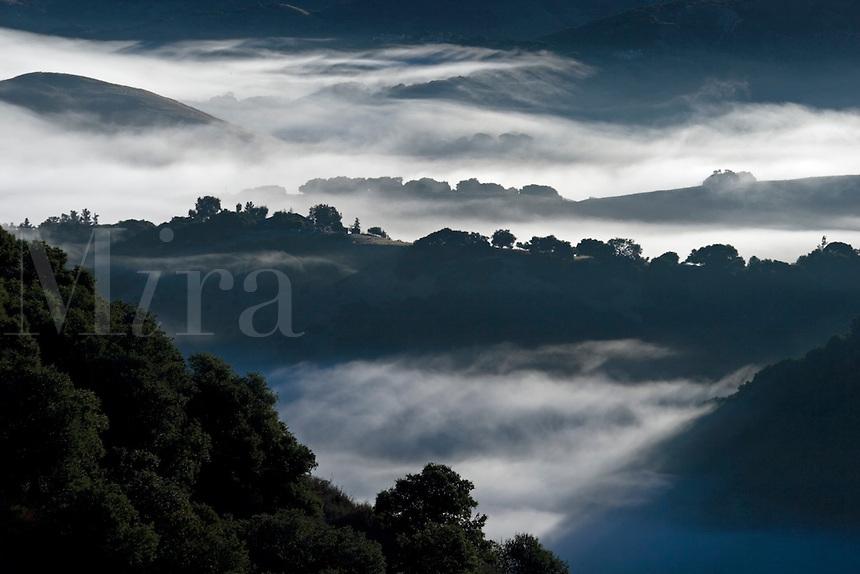 Early morning fog hangs in the low lands below Los Laureles Grade between Carmel Valley and the Salinas Valley - Coastal Mountain Range, California.