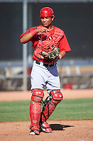 Los Angeles Angels minor league catcher Enyelber Vivas #34 during an instrasquad game at the Tempe Diablo Stadium Complex on October 10, 2012 in Tempe, Arizona.  (Mike Janes/Four Seam Images)