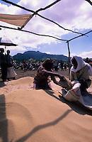 Ethiopia, market day in Lalibela, woman sell traditional grain Teff, Tef flour is used to prepare Injera a sourdough-risen flatbread, it is a national dish in Ethiopia / Aethiopien Lalibela, Markt von Lalibela , Frau verkauft Getreide Teff , Teffmehl ist Grundlage fuer das aethiopische Nationalgericht Injera