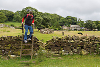 Northumberland, England, UK.  Hiker Traversing a Ladder Stile over a Farmer's fence on Hadrian's Wall Footpath.  Wall Remnant in Background.