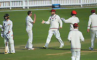 191031 Plunket Shield Cricket - Wellington Firebirds v Canterbury