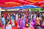 Auroville Action Group 2016