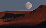 The moon rises above the Trinity Range, near Lovelock, Nev., on Sunday, Nov. 10, 2019. <br />Photo by Cathleen Allison/Nevada Momentum
