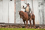"""Cattle marking and branding with the Dell""""Orto family in the Sierra Nevada Foothills of California. (Mattley Barn)"""