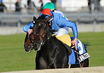09 October 17: Lahaleeb, ridden by William Buick  and trained by Mick Channon, wins the grade 1 E.P. Taylor Stakes for fillies and mares three years old and upward at Woodbine Racetrack in Rexdale, Ontario.