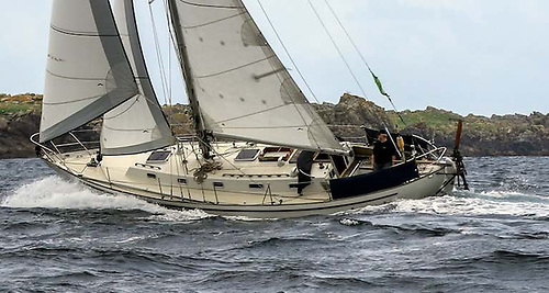 Pat Lawless's Saltram Saga is a proven ocean voyager
