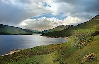 SC - NORTH WEST HIGHLANDS<br /> Loch Cluanie seen from Southwest A87<br /> <br /> Full size: 67,5 MB