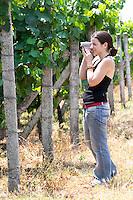 Radost in the vineyard. Kantina Miqesia or Medaur winery, Koplik. Albania, Balkan, Europe.