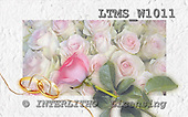 WEDDING, photos, LTMSW1011,#w# Hochzeit, boda