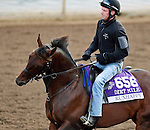 ARCADIA, CA - NOV 01: Runhappy, owned by James McIngvale and trained by Laura Wohler, exercises in preparation for the Breeders' Cup Las Vegas Dirt Mile at Santa Anita Park on November 1, 2016 in Arcadia, California. (Photo by Scott Serio/Eclipse Sportswire/Breeders Cup)