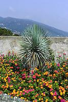 Garten auf dem Dach der Zitadelle in Bastia, Korsika, Frankreich
