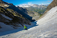 Great turns to an abnormal altitude for the season, Sé Rouge, Wallis, Switzerland, June 2020.
