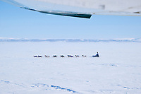 Aerial of Jessie Royer as she runs into the 35 mph wind on Norton Sound between Shaktoolik and Koyuk during Iditarod 2009