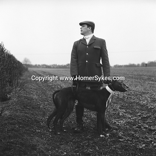 Hare Coursing. Slipper, Wayne Drew, with two greyhounds wearing identifying red and white collars. He is looking over the hedge towards a group of beaters who are driving hares, one at a time, towards the coursing field. The Cotswold Coursing Club Meet, near Kilkenny, Gloucestershire..Hunting with Hounds / Mansion Editions (isbn 0-9542233-1-4) copyright Homer Sykes. +44 (0) 20-8542-7083. < www.mansioneditions.com >..