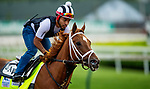 April 28, 2021: Dynamic One gallops in preparation for the Kentucky Derby at Churchill Downs in Louisville, Kentucky on April 28, 2021. EversEclipse Sportswire/CSM