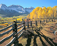 Fall colors from Dallas Creek in the San Juan Mountains, Colorado
