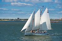 Sail boat in Hudson river near New York, USA