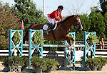 12 July 2009: Becky Holder riding Rejuvenate during the showjumping phase of the CIC 3* Maui Jim Horse Trials at Lamplight Equestrian Center in Wayne, Illinois.