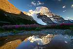 Mount Robson, Canadian Rockies, British Columbia, Canada