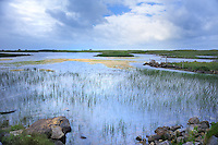 SC - OUTER HEBRIDES - ISLE of NORTH UIST<br /> Balranald Nature Reserve<br /> <br /> Full size: 69,2 MB