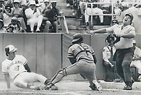 1976 FILE PHOTO - ARCHIVES -<br /> <br /> Emphatic Ump: Home plate umpire Larry McCoy lets the world know in no uncertain terms that Blue Jays' Bob Bailor was safe with first run of 4-1 victory yesterday over Milwaukee Brewers. Bailor scored from first base on single to right field by OttoVelez when Jimmy Wynn played the ball nonchalantly. The Jay centrefielder never stopped running and beat relay from second baseman Len Sakata to catcher Larry Haney. More than attended Cap Day game and watched jays end a nin losing streak behid the sharp pitching of Dave Le [Incomplete]<br /> <br /> <br /> Bezant, Graham<br /> Picture, 1977,<br /> <br /> 1976<br /> <br /> PHOTO : Graham Bezant - Toronto Star Archives - AQP