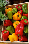 BOX OF MIXED BELL PEPPERS