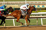"""ARCADIA, CA  SEP 26: #2 Improbable, ridden by Drayden Van Dyke, passes #1 Take the One O One, ridden by Jose Valdivia, Jr., on his way to winning the Awesome Again (Grade l) """"Win and You're In Breeders' Cup Classic Division"""" on September 26, 2020 at Santa Anita Park in Arcadia, CA.  (Photo by Casey Phillips/Eclipse Sportswire/CSM."""