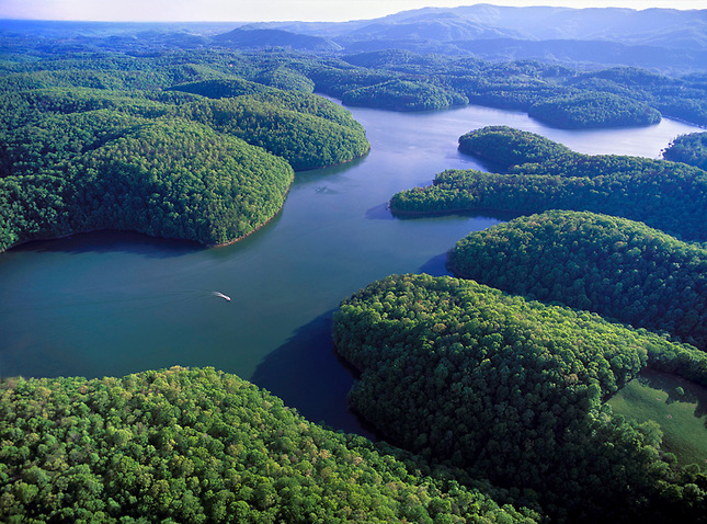Norris Lake on Powell River