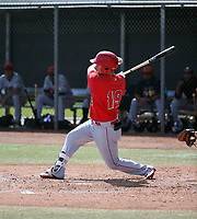 Brendon Sanger - Los Angeles Angels 2019 spring training (Bill Mitchell)