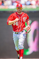 26 May 2013: Washington Nationals outfielder Bryce Harper trots back to the dugout during a game against the Philadelphia Phillies at Nationals Park in Washington, DC. The Nationals defeated the Phillies 6-1 to take the rubber game of their 3-game weekend series. Mandatory Credit: Ed Wolfstein Photo *** RAW (NEF) Image File Available ***